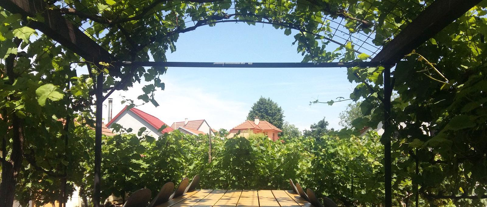 Vinný Sklep u Zdenky